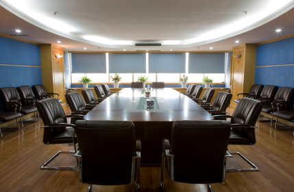 Directors And Officers Claims And Litigation